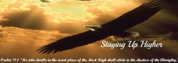 SUH_eagle